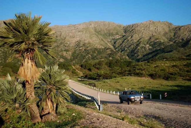 Dique las palmeras. En San Francisco del Monte de Oro